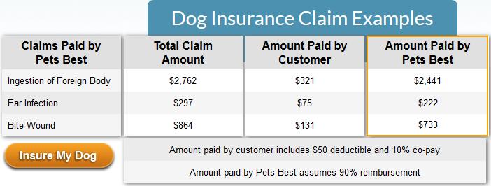 Pet Dog Insurance